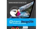 WebDesign25h Agencja Reklamowa